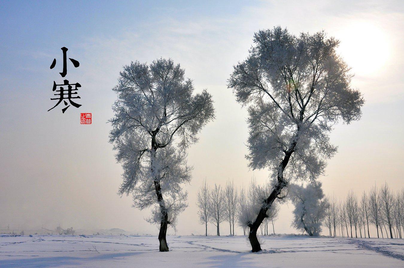 小寒(1月5-6日)